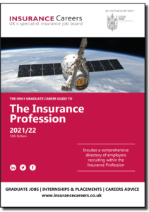 The Insurance Profession